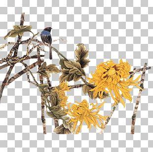 Chrysanthemum Bird-and-flower Painting PNG