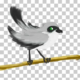Feather Beak Wing PNG