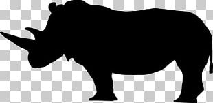 American Black Bear Giant Panda Polar Bear PNG