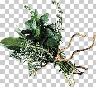 Beef Bourguignon Bouquet Garni Herb Olive Oil Flower Bouquet PNG