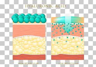 Hyaluronic Acid Skin Care Elastin Anti-aging Cream PNG