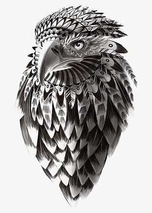 Indian Black And White Line Art Style Eagle PNG