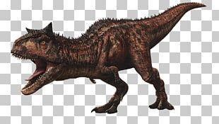 Velociraptor Carnotaurus Jurassic World Evolution Tyrannosaurus Jurassic Park PNG