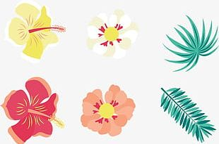 Hand-painted Flowers And Exotic Palm Leaf Background PNG