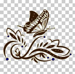 Ornament Decorative Arts PNG