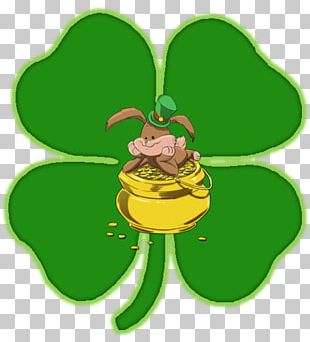 Saint Patrick's Day Leprechaun March 17 Ireland PNG
