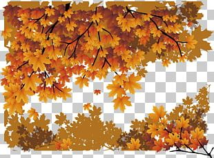 Maple Leaf Autumn Poster PNG