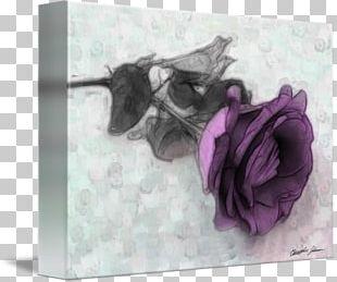 Purple Violet Flower Lilac Lavender PNG