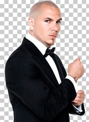 Pitbull Artist PNG