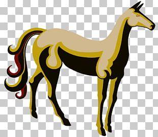 Belgian Horse Friesian Horse Arabian Horse Equestrian PNG