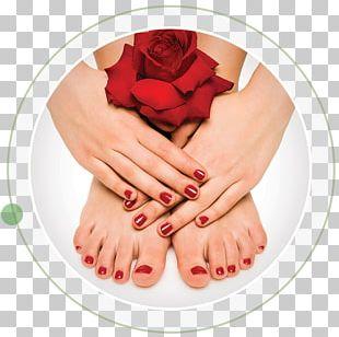 Pedicure Manicure Beauty Parlour Artificial Nails PNG
