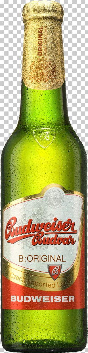 Budweiser Budvar Brewery Beer České Budějovice Pilsner PNG