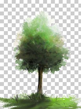 Watercolor Painting Brush Tree PNG