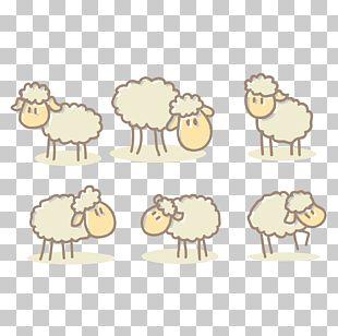 Sheep Alpaca Cartoon Drawing PNG