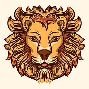 Lion Fashion Drawing PNG