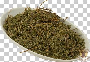 Prostrate Knotweed Redshank Herb Raw Material Tea PNG