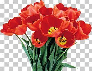 Flower Bouquet International Women's Day PNG