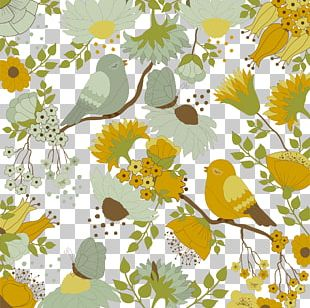 Bird Flower Color Shading Background PNG