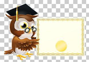 Owl School PNG