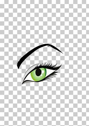 Eyebrow Human Eye PNG