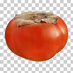 Persimmon Bush Tomato Winter Squash Food Spoilage PNG