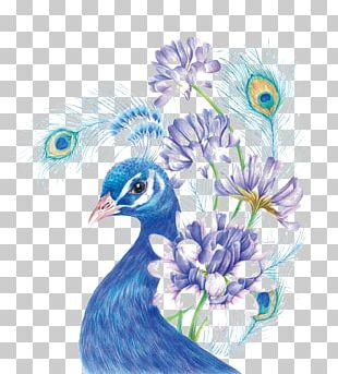 Drawing Colored Pencil Painting Sketch PNG