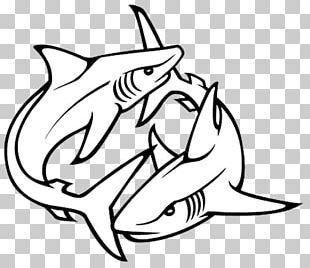 Shark Tattoo Artist Drawing PNG