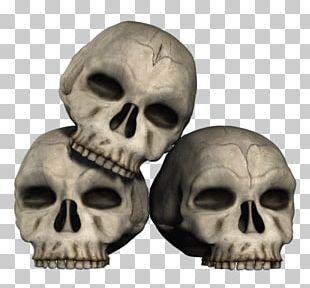 IPhone 5s IPhone 5c Skull PNG
