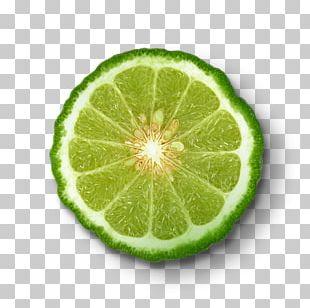 Key Lime Bergamot Orange Sweet Lemon Tangelo Citron PNG