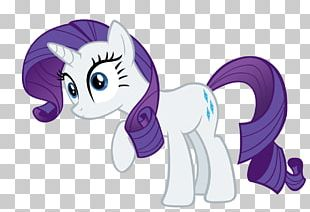 Rarity Rainbow Dash Pinkie Pie Twilight Sparkle Pony PNG