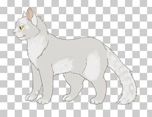 Cat Whiskers Whitestorm Warriors Brindleface PNG