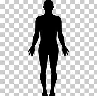 Human Body Homo Sapiens Silhouette PNG