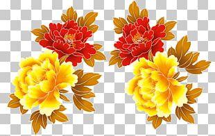 Chrysanthemum Euclidean PNG