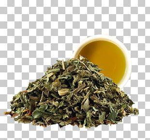 Nilgiri Tea Hōjicha Tea Bag Peppermint PNG