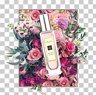 Perfume Jo Malone London Cosmetics Beach Rose Floral Design PNG