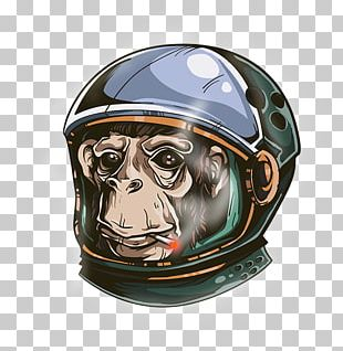 Monkeys And Apes In Space Space Suit Graphic Design PNG