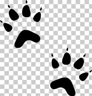 Paw Bear Sphynx Cat Dog Pet Sitting PNG