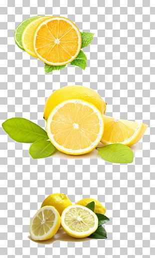 Lemon Juice Variegated Pink Lemon Tonic Water Lemon Battery PNG