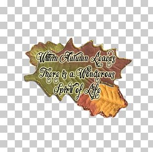 Leaf Font PNG