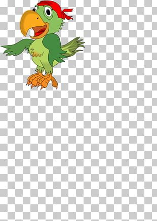Pirate Parrot Piracy Bird PNG