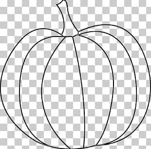 Pumpkin Pie Jack-o'-lantern Carving Drawing PNG