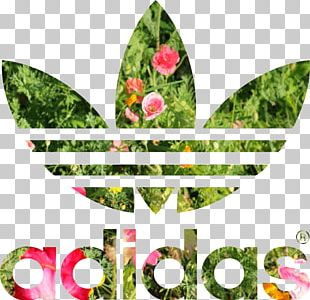 T-shirt Adidas Stan Smith Hoodie Adidas Originals PNG