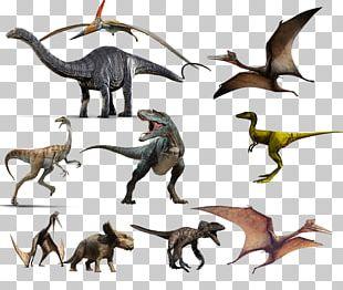 Tyrannosaurus Diplodocus Dinosaur Apatosaurus Anchiceratops PNG