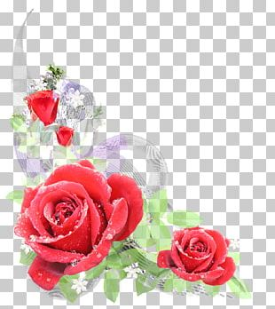 Cut Flowers Floral Design Rose Flower Bouquet PNG