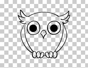 Drawing Nite Owl Painting PNG