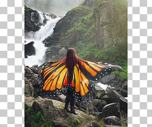 Monarch Butterfly Cape Costume Scarf PNG