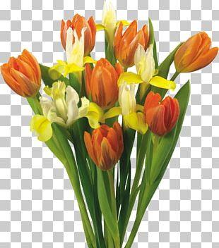 Flower Bouquet Tulip Garden Roses PNG