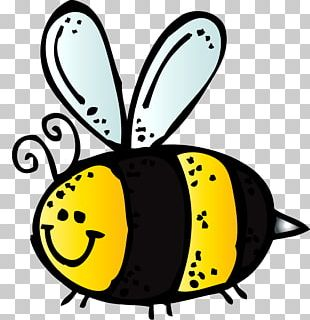 Bee Insect Drawing PNG