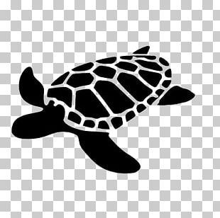 Sea Turtle Decal Silhouette Stencil PNG