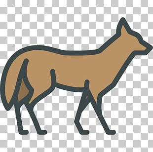 Red Fox Disney's Animal Kingdom Computer Icons Coyote PNG